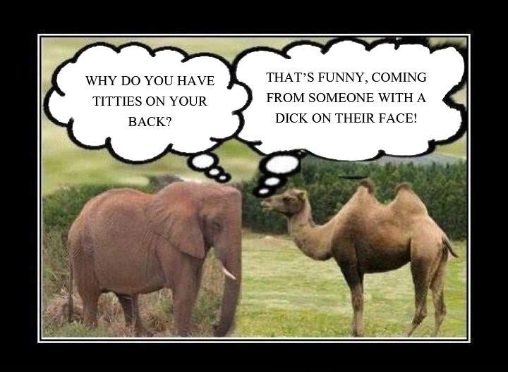 Funny Jokes  Comedy Central Jokes